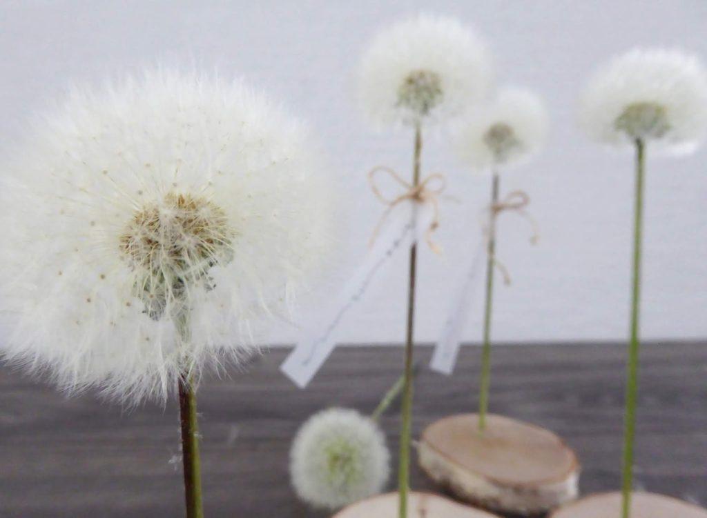 mit Strich und Faden: Pusteblume als Deko